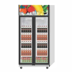 RSA Showcase Display Cooler 2 doors JADE - 860 Liter